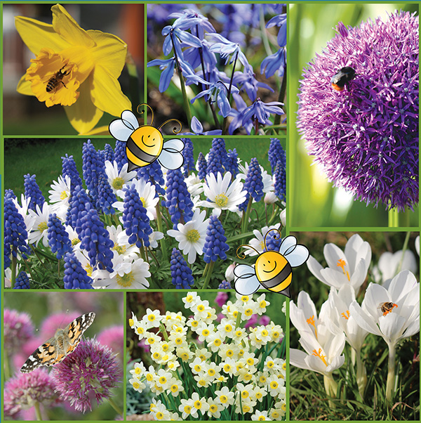 All-A-Buzz - Polliantor Friendly Garden - Feature