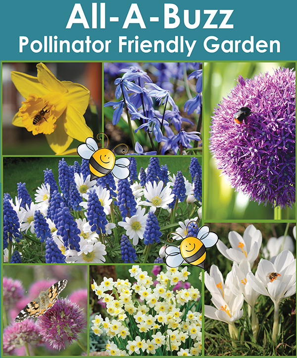 All-A-Buzz - Polliantor Friendly Garden
