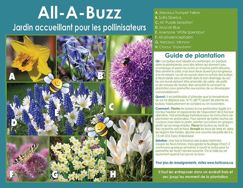 All-A-Buzz - Pollinator Friendly Garden - Instructions - French