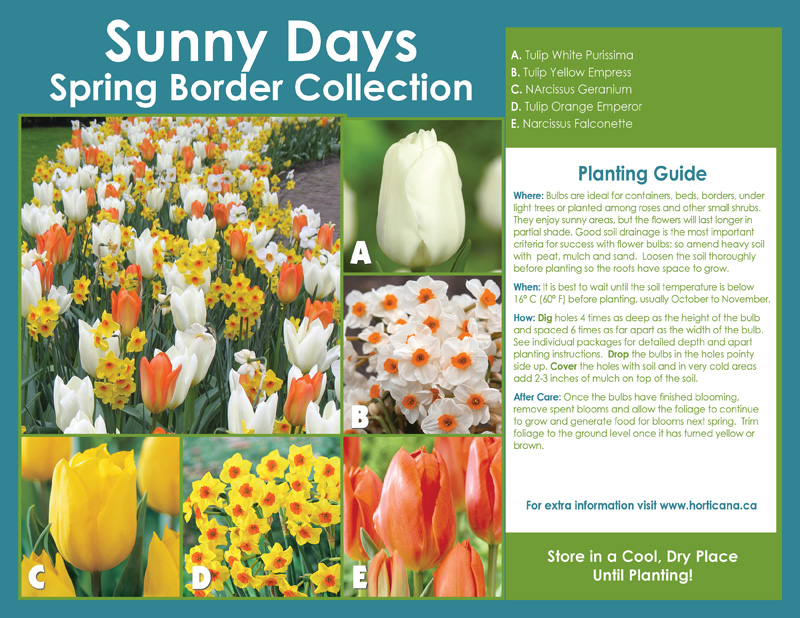 Sunny Days Spring Border Collection - English Instructions