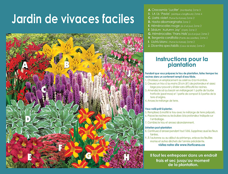 Effortless Perennial Garden - Planting Instructions - French