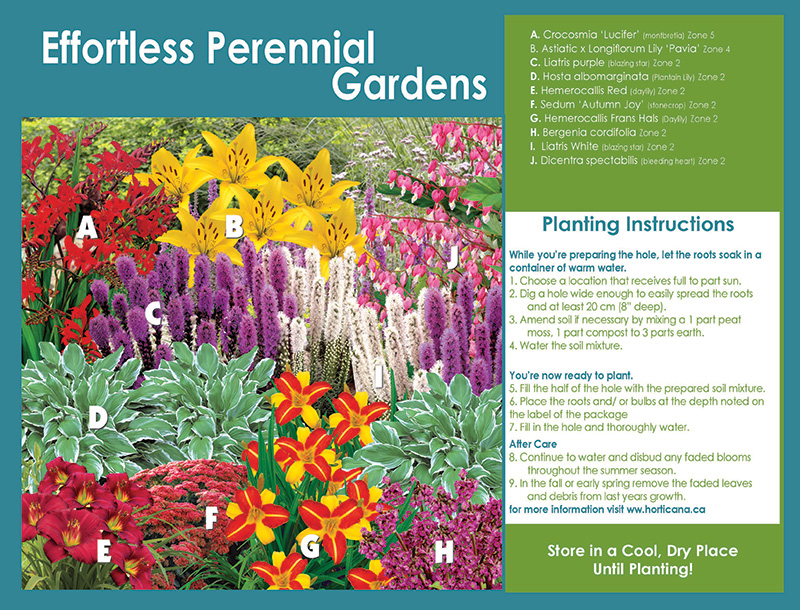 Effortless Perennial Gardens - Planting Instructions