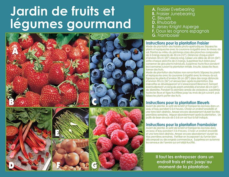 Gourmet Fruit and Vegetable Collection - Planting Instructions - French